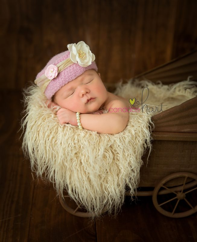 Candace Hart Photography Newborn Photographer in monmouth, il